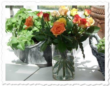 Die Paten von Stellina aus Oer-Erkenschwick schenkten uns gestern diese wunderschönen Rosen. Schön war's mit Euch :-)