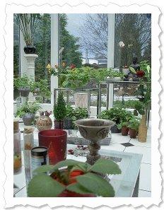 Season's greetings - Shakti & Sophia am 25. Dezember '09 in Oer-Erkenschwick