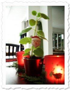 Axel und Annette Maria wünschen allen Flower of Change - Paten einen frohen Nikolaustag :-)