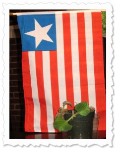 Foto of the Washington,DC Peace Plant. By x-mas I may get one to the US Institute of Peace and the White House. The flag is of Liberia...