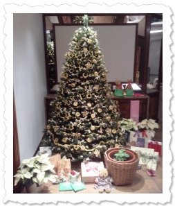 Here are some Xmas pics of Cisky 'clones'... The Xmas tree this year is decorated only and exclusively with pasta :)