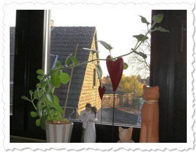 Antonia in Köln-Porz. Wo will sie bloss hin? Mitlerweile lehnt sie rechts schon am Fenstergriff! :-)