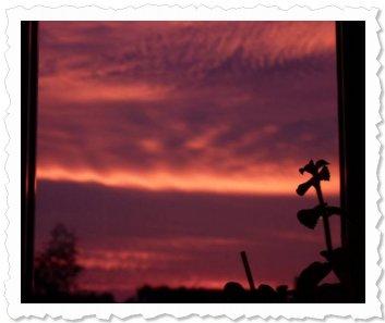 Sonnenaufgang am 30. Oktober 2010 in Langel