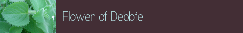 Flower of Debbie